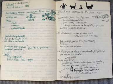 Från en anteckningsbok jag hade under seminarierna på Historicum.
