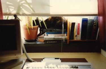 Pollux vilar sig i fönstret.